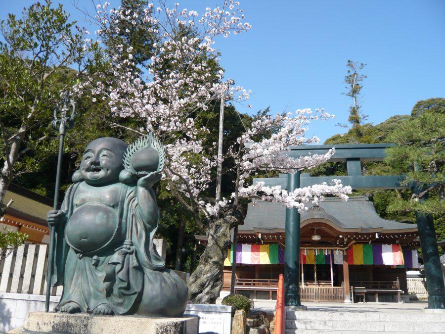拝殿と布袋尊と桜