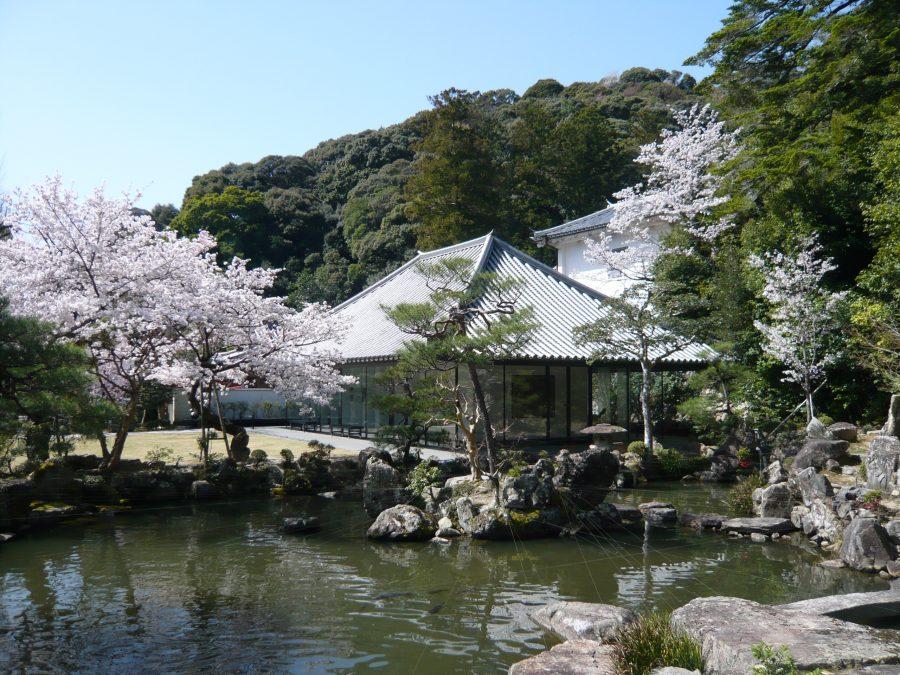 史料館、池苑と桜
