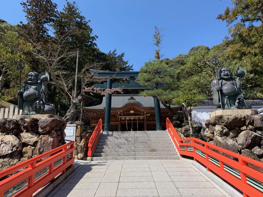 拝殿、鳥居横の桜
