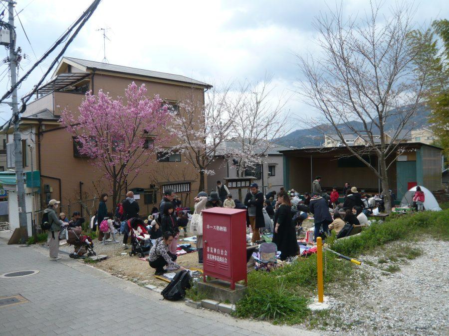 桜の咲く、参道広場